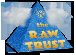 RAW-Trust-Pyramid-3D-302px